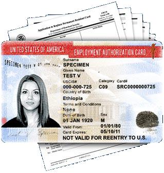 Employment Authorization Card Renewal (EAD)